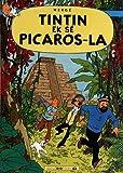 Tout listwa Tintin : Tintin ek sé Picaros-la : Edition en créole antillais