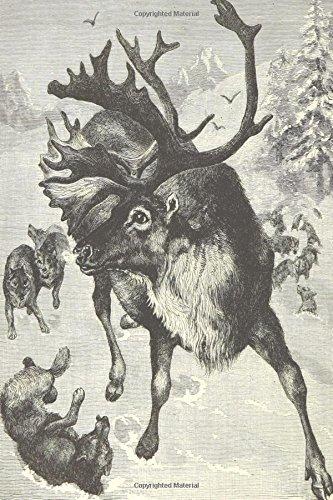 Vintage Reindeer Drawing Journal: (Notebook, Diary, Blank Book) (Vintage Christmas Image Journals Notebooks Diaries)