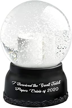 2021 Snow Globe Hilarious Toilet Paper Snow Globe I Survived The Great Toilet Paper Crisis of 2020 Cute Crystal Clear Glass S