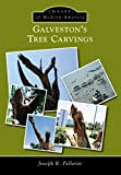 Galveston's Tree Carvings (Images of Modern America) (English Edition)