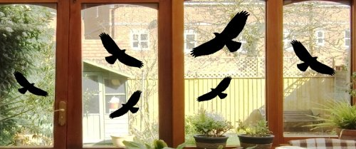 Mabi-IN-Design 6 Vogel Aufkleber - Vögel Fenster Glas Greifvogel Fensterbild - Verschiedene Größen B368 (schwarz)