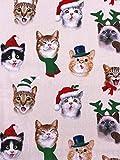 Slantastoffe Stoff Baumwolle Patchwork Katzen Weihnachten