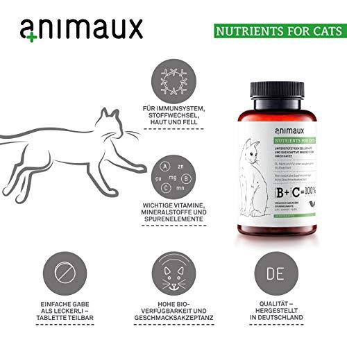 Katzen-Vitamine zur Stärkung des Immunsystems | Unterstützt den Zellschutz auf natürliche Weise | animaux – nutrients for cats | Vom Tierarzt empfohlen | DL-Methionin für einen ausgewogenen Stoffwechsel | Unterstützt das Leistungspotential | rein natürliche Geschmacksträger | hohe Geschmacksakzeptanz | Zink, Mangan, Selen | für gesunde Haut und ein glattes, glänzendes Fell - 2