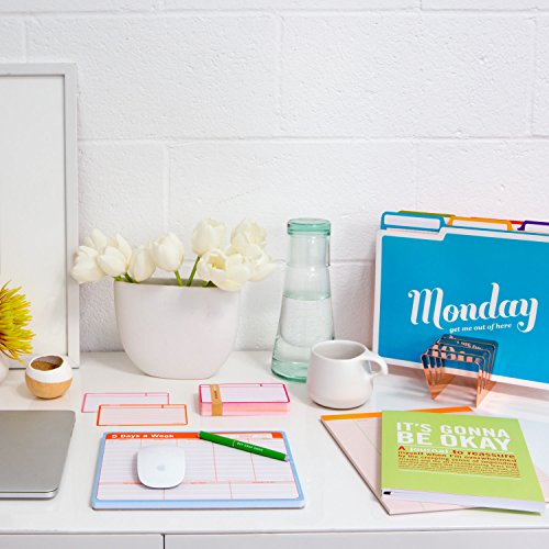 Knock Knock Days of the Week File Folders Set, Daily / Weekly Organizer Files (Set of 6, 11.5 x 9-inches) Photo #11