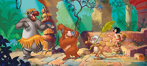 Fototapete Disney Tapete Dschungelbuch Mogli Balu Kinder 202x90cm FTDh 0655