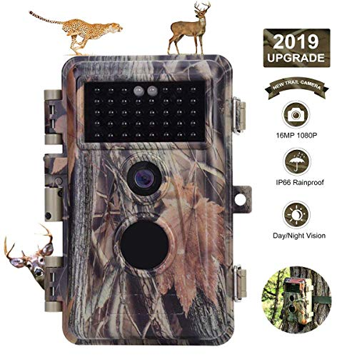 BlazeVideo HD 16MP 720P Digital Game Scouting & Hunter Trail Hunting Camera 65ft Night Vision & PIR...
