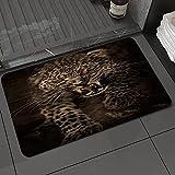 Alfombra de baño y Alfombra antideslizanteAtaque Leopard Atacando Angry Brown Defiende Safari Leopardsafari Prey Park Sky Egipto Alfombrilla de Ducha de Microfibra (50x80cm)