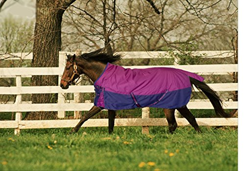Turnout 1680D Horse Winter Waterproof - Horse Blanket 004 - Size from 69' to 83' (81')