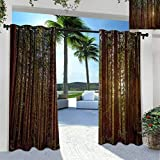 SeptSonne Forest Outdoor Noise Reducing Curtains for Patio Porch Gazebo Garden Redwood Forest in California USA Nature Outdoors Landscape Woods Park Redwood Green Yellow 84' W x 63' L