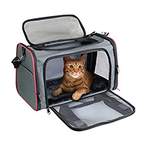 GOOPAWS Soft-Sided Pet Travel Carrier, Airline Approved Cat Carriers Dog Carrier Collapsible, Durable, Top Loading, Car Seat for Dogs and Cats and Small Medium Animal, 17″