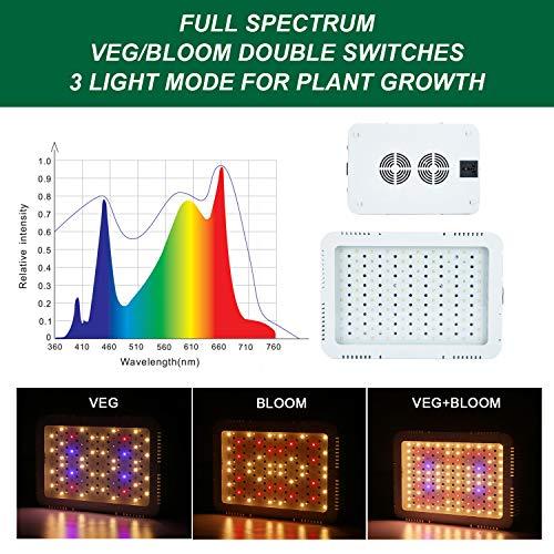 plants under grow lights