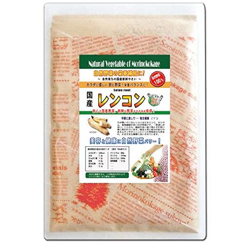 森のこかげ レンコン 国産 野菜 粉末 パウダー 100g 売筋粉