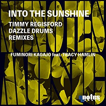 Into The Sunshine (Timmy Regisford & Dazzle Drums Remixes)