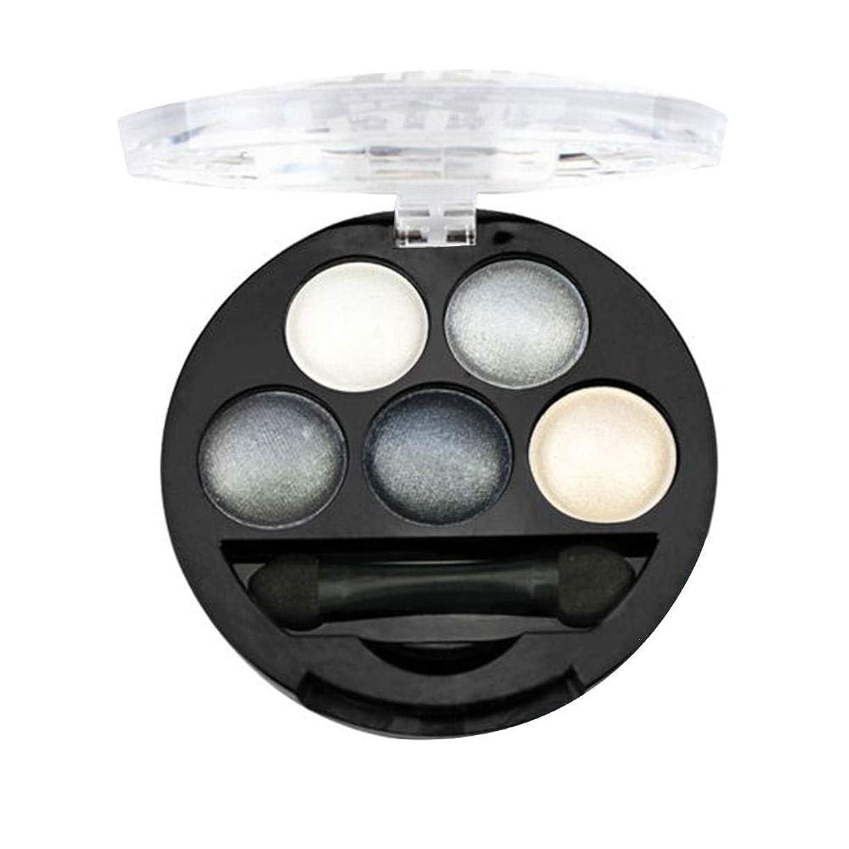 振動する銀軍隊Refaxi 5色プロフェッショナルアイシャドウパレットシマーメイクアップピグメントインナーアーティスト高品質アイシャドウ(#2)