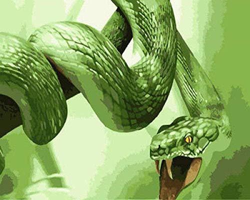 N-S Pintura de Bricolaje por números Kit de Pintura al óleo de Lienzo de víbora Verde para niños Adultos Pintura de Dibujo con Pinceles acrílicos sin Marco