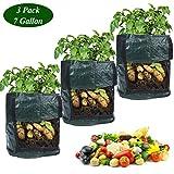 grow borse 2/3pcs sacchi per piante vasi di tessuto non tessuto 7/10 gallon contenitore tasche per coltivare patate carote zucchine e pomodori (3 * 10gallon)