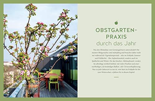Mein City-Obstgarten: Fruchtiges Naschvergnügen für Balkon & Terrasse (GU Garten Extra) - 9