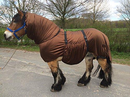 Hafer24 Ekzemerdecke braun für kräftige Pferde Barock, Friese, Hengsttyp Gr.135-175 (175)