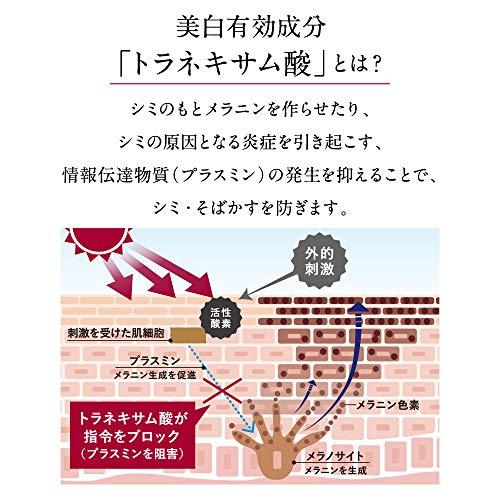 https://m.media-amazon.com/images/I/51Pqqy-OHML.jpg