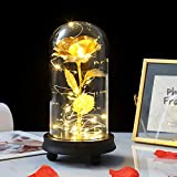 Enchanted Rose Lamp,Beauty and The Beast Rose,Gold Silk Rose Gold Foil Leaf and LED String Light on Glass Dome Wooden Base,Romantic Gift for Birthday Wedding Valentine's Day