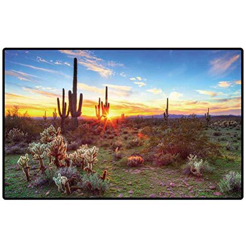 RenteriaDecor Bathroom Carpet Sun is Setting Between Saguaros in Sonoran Desert. 2 Door Mat for Kitchen Farmhouse Bathroom Entryway Carpet