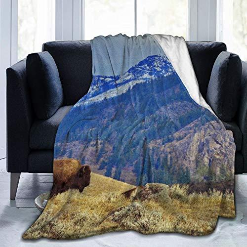 Manta de Tiro,El único Bisonte contra el telón de Fondo de Las montañas en el Grand Loop Road del Parque Nacional Yellowstone en Wyoming,Manta de Felpa Suave para sofá,Viaje,Manta mullida 50'X60'