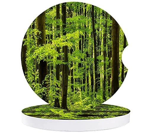 Nature Woodland - Juego de 2 posavasos de cerámica absorbente con muesca de dedo para quitar fácilmente la alfombrilla de auto taza verde fresco paisaje del bosque