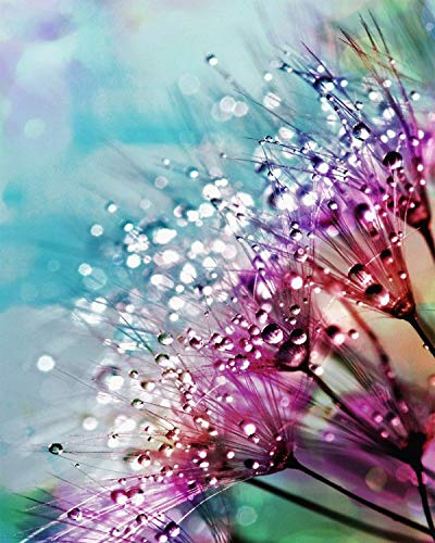 Ritoti DIY 5D Diamond Painting Kits for Adults Beginners Full Drill Crystal Rhinestone Pictures Arts Craft for Home Wall Decor (11.81x15.75 Inch,Dew Between Flowers)