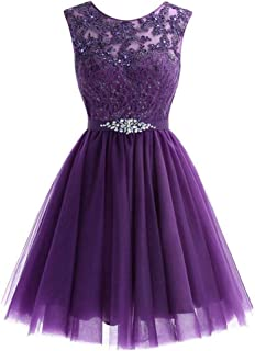 ZYDP Round Neck Sleeveless Beaded Sequined Appliques Short Party Evening Swing Dress (Color : Purple, Size : US12)