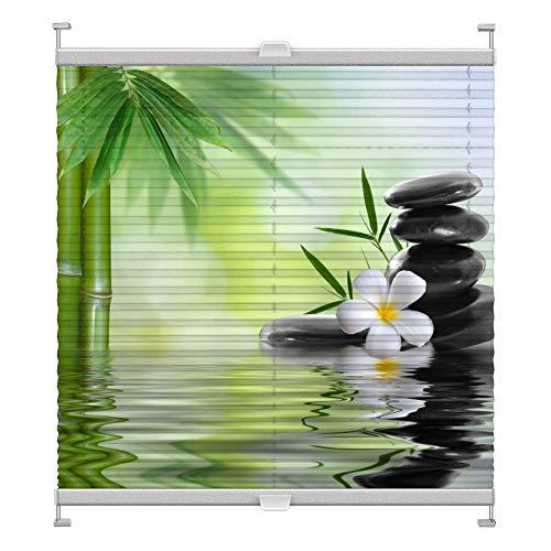 Plissee mit Motiv 1011 nach Maß Schrauben in Glasleisten Klemmen auf Fensterrahmen Digitaldruck Sichtschutz lichtdurchlässig fest verspanntes Jalousie Rollo Fenster innen Breite 51-74 Höhe 200-230 cm