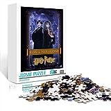 Teens Jigsaw Puzzles Harry Potter y la piedra filosofal Rompecabezas 300 piezas 15 x 10 pulgadas Rompecabezas desafiantes y educativos Juegos Juguetes