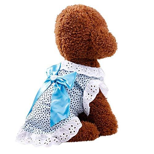 Doublehero Hundebekleidung,Hund Katze Puppy Prinzessin Kleider Modischer Mesh Spitze Tutu Rock Bowknot Hund Kleid Prinzessin Hochzeit Kleider Kostüme Kleidung Kleidung (XL, Blau)
