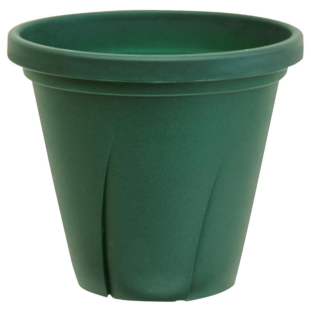 とまり木パット女王大和プラスチック 根はり鉢 10号 9.6L ダークグリーン