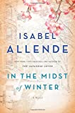 Image of In the Midst of Winter: A Novel
