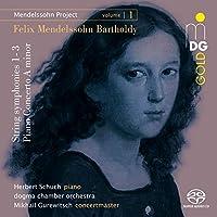 Mendelssohn Project 1