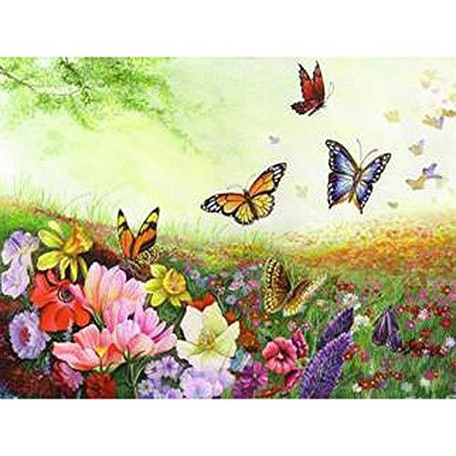 XSUHAN Pintura por Números Colorida Flor Y Mariposa Pintura DIY por Kits De Números Color Pintura por Números con Marco De Madera