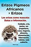 Erizos Pigmeos Africanos y Erizos. Los Erizos Como Mascota: Datos E Informacion.Cuidado, Cria,...