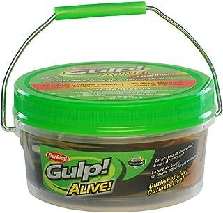 Berkley Gulp! Alive! Jumbo Leech/Minnow Assortment Bucket 12.7 Ounce, 5-Inch/3-Inch, Assortment