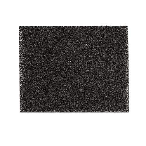 Filtro a Carbone Attivo a Pietra Chiara - Filtro per Deumidificatore DryFy 16, Filtro di Ricambio, 17x21,3 cm, Colore Nero