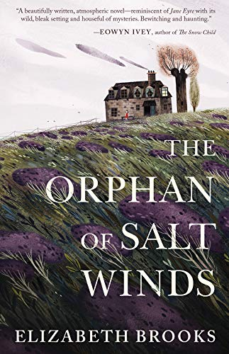 Image of The Orphan of Salt Winds