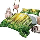 Juego de edredón para niños con diseño de bosque, cubierta de cama, fantasía, color Marsala, bosque de niebla, selva, bosque de ensueño, desierto, luz del sol, imagen de tamaño completo, melocotón gra