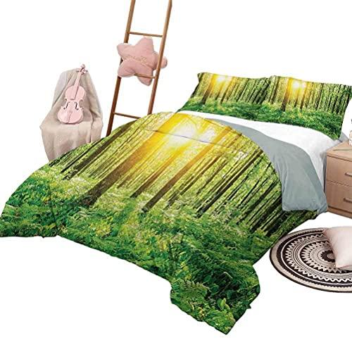 Juego de edredón con sábanas Woodland Colcha para cama para todas las estaciones Campanillas en Wepham Woods Flores silvestres Primavera Medio ambiente rural Impresión fotográfica Tamaño completo Púrp