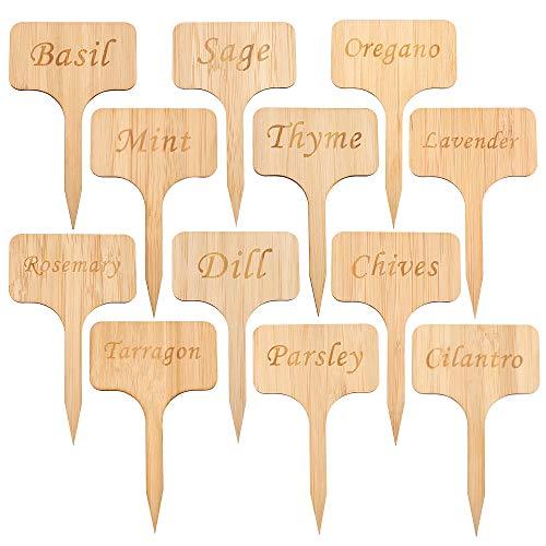 Kinglake, etichette ecologiche per piante in bambù, 12 pezzi, con scritta in lingua inglese 'T', per erbe aromatiche, semi e verdure (10 x 6 cm)