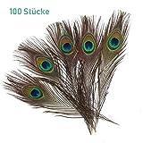 ZesNice 100 Stück Pfauenfedern Schöne Natürliche Federn, 25-30 cm, Handwerk Dekoration für Karnevalskostüm Augen Kunst Kleid Hüte Hochzeit Party