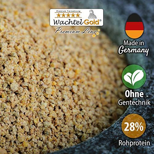WachtelGold Wachtelkükenfutter 25kg - mit 28% Protein - Aufzuchtfutter ohne Gentechnik