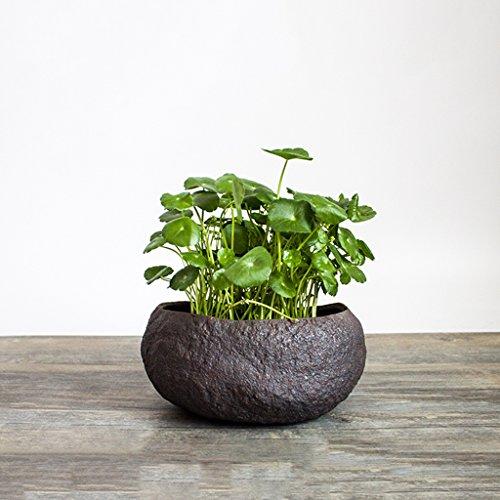 BOBE SHOP- Handgemaakte Grof Aardewerk Bloem Plant Potten Vintage Keramische Vaas Succulente Plant Potten Indoor Decoratie