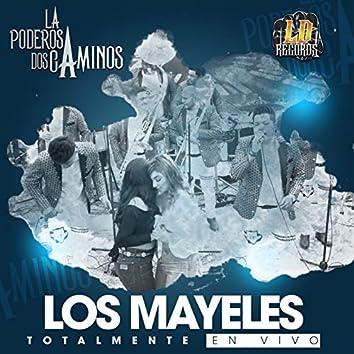 Los Mayeles (Live Version)