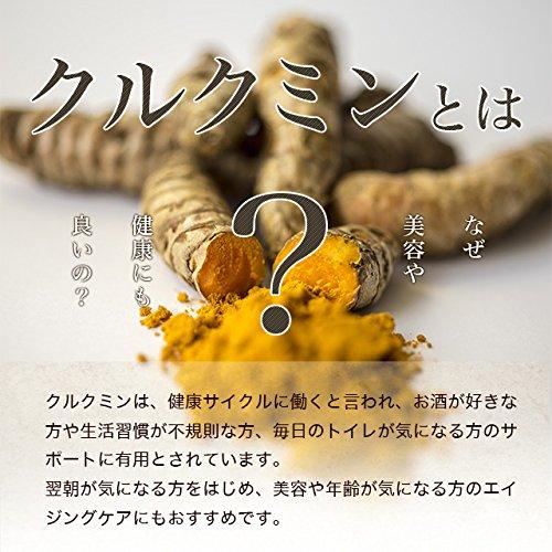 お徳用秋ウコン粒(270粒/約3ヶ月分)