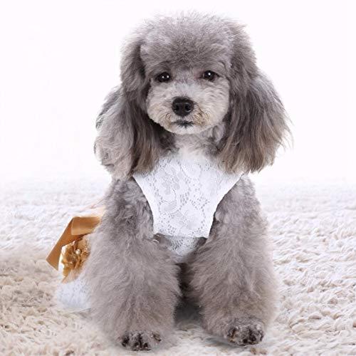 SALUTUYA Vestido de Encaje para Perros, Vestido de Velo para Perros, Haz Que tu Mascota se Sienta Fresca en Verano, Hecho de Material de algodón(L)
