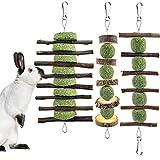 ERKOON 3PCS Bunny Chew Toys, Rabbit Chew Toys for Teeth...